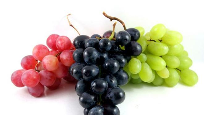 Manfaat Anggur Bagi Kesehatan
